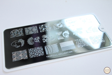 MoYou Tropical Stamping Plate 1.jpg